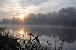 Утро на озере. / Туманное утро.