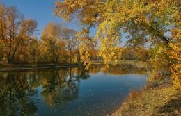 Осенние краски / Остров отдыха в Абакане Хакасия