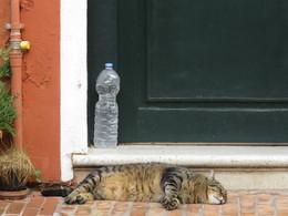 Минздрав предупреждает : / Пейте чистую воду
