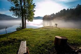 Утро Телецкого озера / Утренняя прогулка - лето 2016