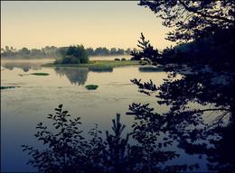 Без названия / Костромская область. Река Кубань.