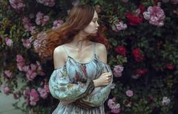 lady rose / ***