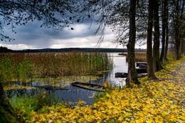 Альбертин озеро / Нынешней осенью в дождливую погоду...