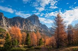 Краски осени / Доломиты, Альпы
