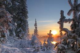 зимняя синева / Иркутская область Казачинско-Ленский район