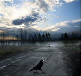 / Раннее утро, по дороге в Чашинск...