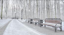 Опустевшая аллея / Январь 2015 года , парк Царицыно город Москва .