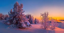 С Новым Годом, или Ладожская зима. / Друзья! Поздравляю всех с Новым Годом! Желаю солнца и радости цвета! Карелия. Ладожское озеро.