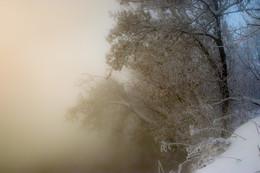 Утренняя вуаль / Морозное утро.