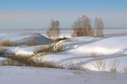 ЗАУАЛЬСКАЯ ЛЕСОСТЕПЬ / Под снегом наши поля и перелески...