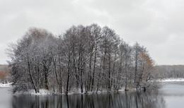 / островок с деревьями