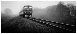 Пригородный / Поезд Гродно - Барановичи. Снято возле Слонима.