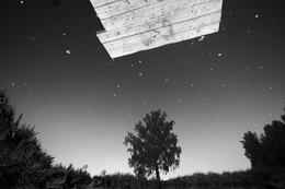 Небо отражается в пруду с березой у Алексеевского осенью / Небо отражается в пруду с березой у Алексеевского осенью