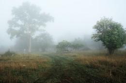Деревенское утро ... / Деревня ...