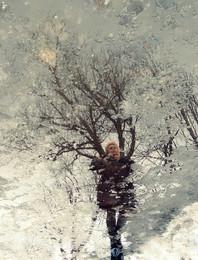 """""""Из жизни весенних луж"""" / * * *"""