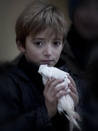 Мальчик с голубем /