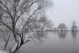 У реки / Москва река в Строгино