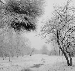 Весенний снег. / В парке,Строгино.