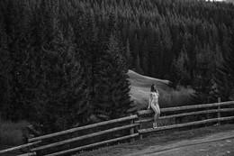 Без названия / Величие карпатских лесов и маленькая богиня на заборе ;)
