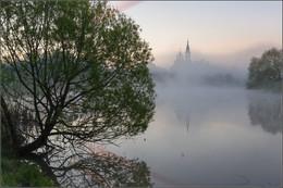 Сельский пруд / Россия. Московская обл. Село Валищево.   май 2017