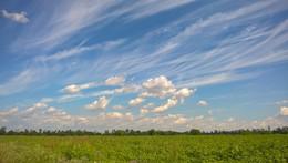 Облака / Снято мобильным телефоном.