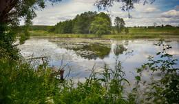 «Лето» / Озеро у деревни Чижовка