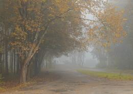 Утро туманное, утро седое... / ***