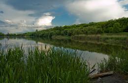 Без названия / пруд, Ботанический Сад, Донецк, дождь