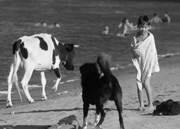 Пляжное / пляж на р. Сыр-Дарья, Мактааральский район