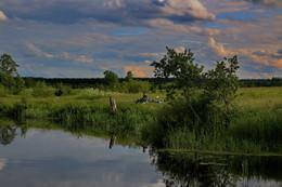 Рыбалка на тихом берегу Волги. / Волга.