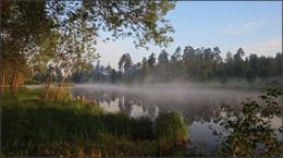 тихо уходит туман... / утро, туман