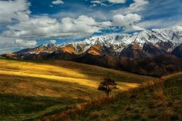 / Кавказ