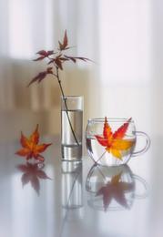 нежная осень / sony A7
