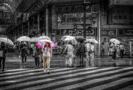 дождь / canon 50D Kagoshima