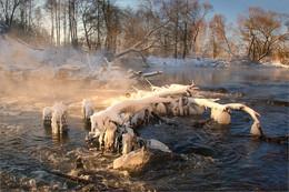 Зимние воспоминания / Свислочь, январь