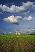 весенний пейзаж с молодыми посевами и строением неустановленного назначения / IMG_1557 1 1 1 1 проба 2x3 700 ау.jpg