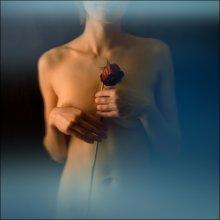 Rose / Оля Беляева