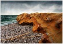 Камень у моря... / Из коллекции камней