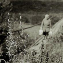 Незаметная жизнь / В окрестностях Заславля. Фото сделано в тот момент, когда Саша http://falcon.photoclub.by/) был увлечен чисткой моего светофильтра от пыли:)