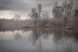 Немного тумана / в ноябре