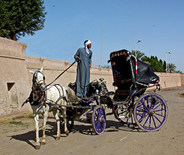 Я это отчетливо вижу / В ожидании седоков. Египет, Эдфу.
