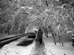 Просто наступила зима. / ***