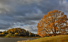 Осенняя палитра / Природа осенью