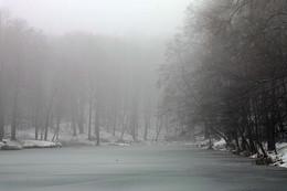 Монохром декабря / Зимние туманы.