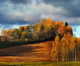 Природа осенью / Возвышенность Хаанья. Эстония