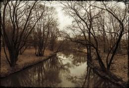 """""""Rio de Noviembre"""" / Ноябрь. Голые деревья  Над потемневшею водой Ждут снега..."""