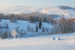 За зимним букетом... / Княжьи горы, Казахстан