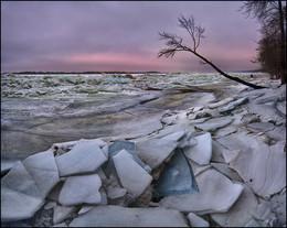 Без названия / р.Волга