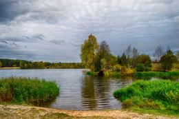 лесное озеро Клинцы / осенний пруд