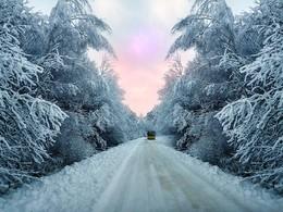 Зимний маршрут / Зимний маршрут